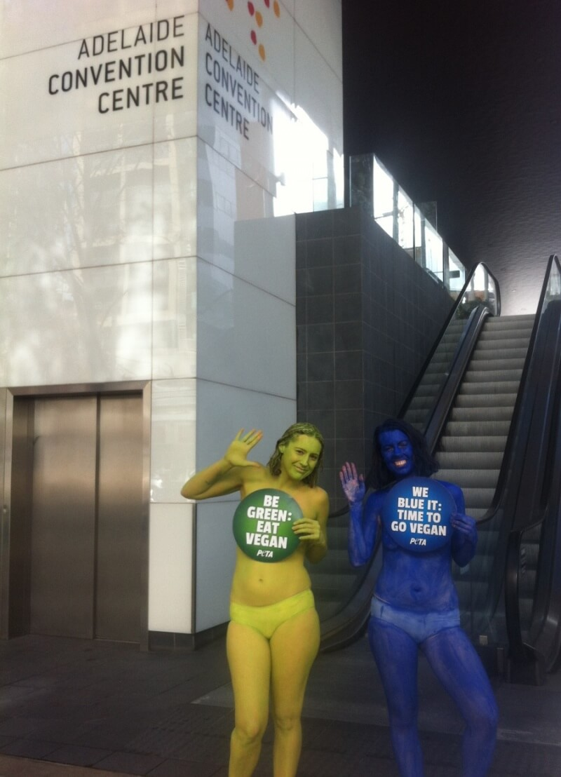Adelaide Climate Demo PETA