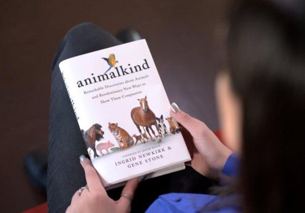 Image shows book: Animal Kind
