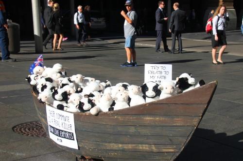 PETA Australia live export protest
