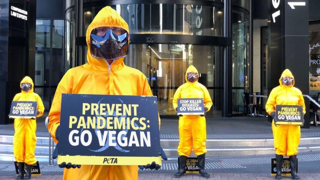 Protesters dressed in hazmat suits in Brisbane.
