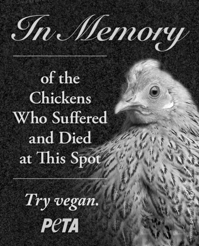 Chicken Tombstone