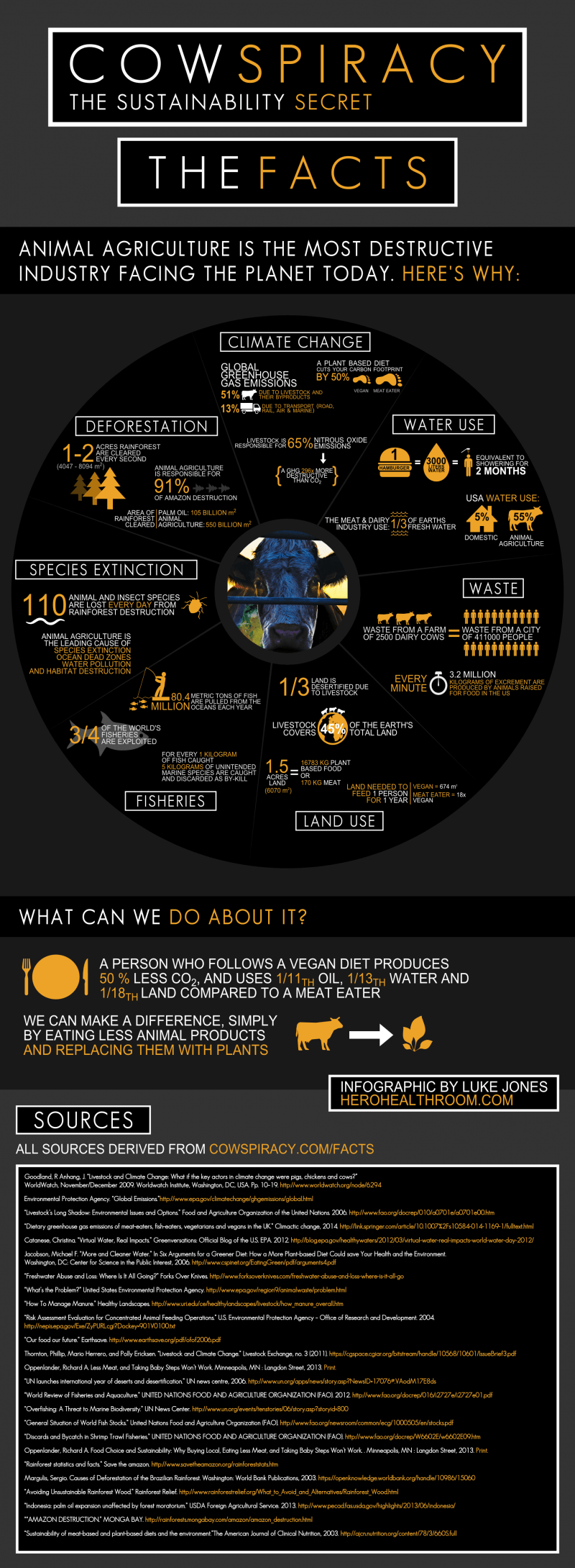Cowspiracy-Infographic-Metric
