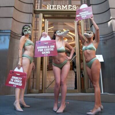 Three PETA protesters outside Hermés