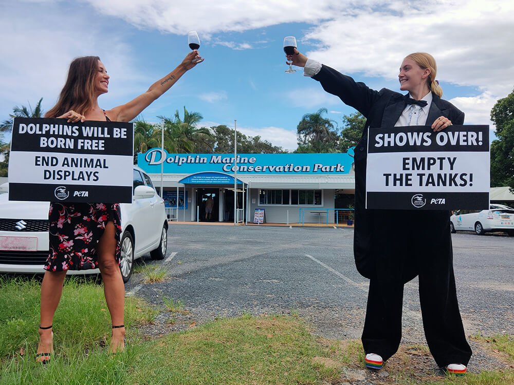 PETA supporters wearing formal clothes and drinking champagne at Dolphin Marine Conservation Park.