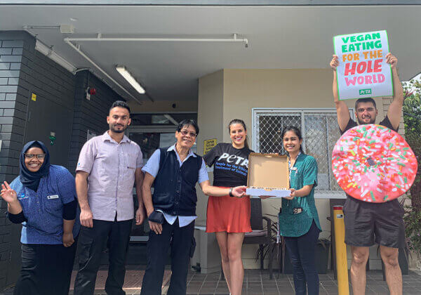 """St Patrick's Green aged-care facility staff celebrate another """"doughnut day""""!"""