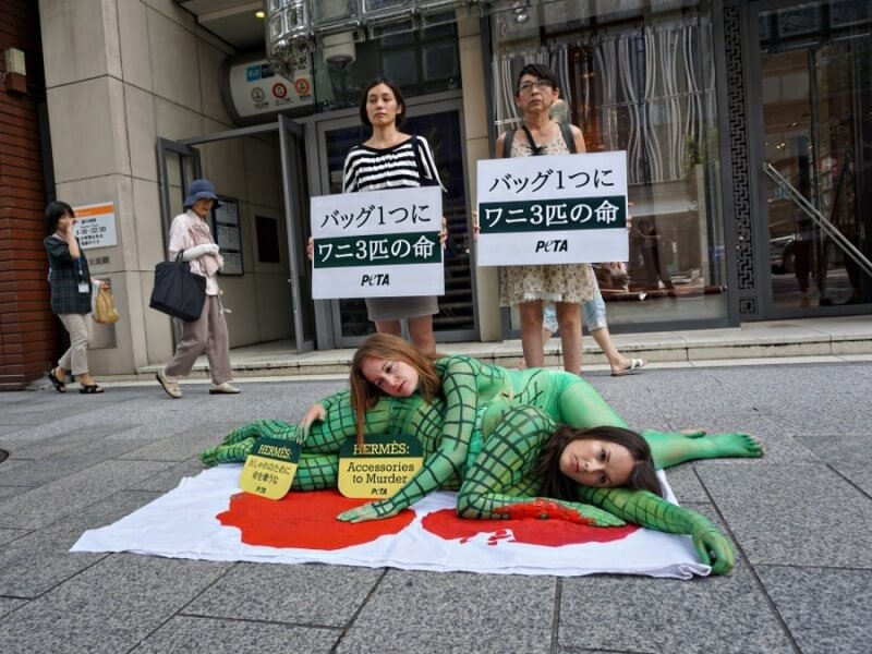 PETA Hermes Naked Demo Japan