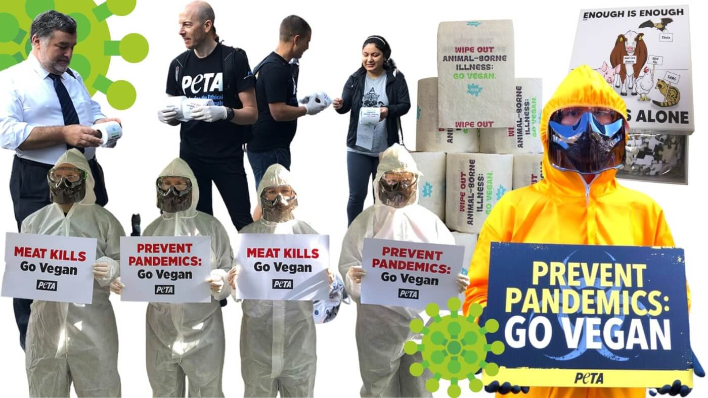 """PETA protesters in hazmat suits, PETA's """"pandemic"""" puzzle and highly sought after toilet paper."""