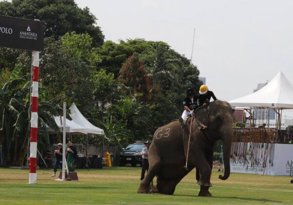 Elephant Rides Cambodia