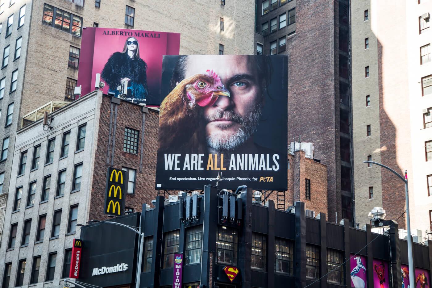 We Are All Animals Billboard