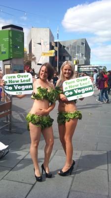 Lettuce Ladies in Melbourne