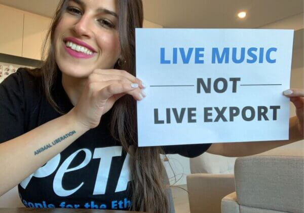 Live Music, Not Live Export