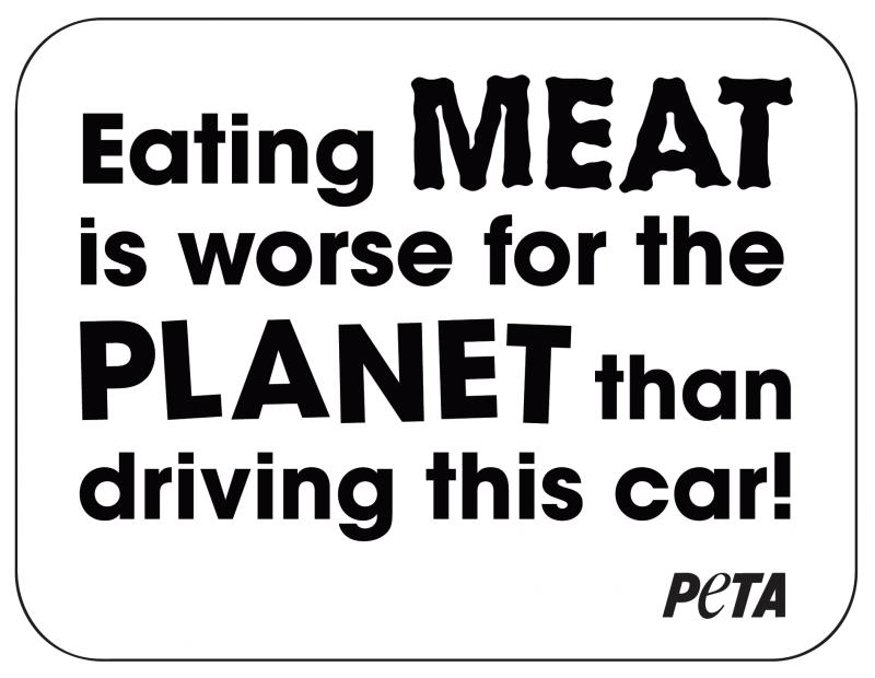 Meat's Not Green Car Sign - PETA Australia