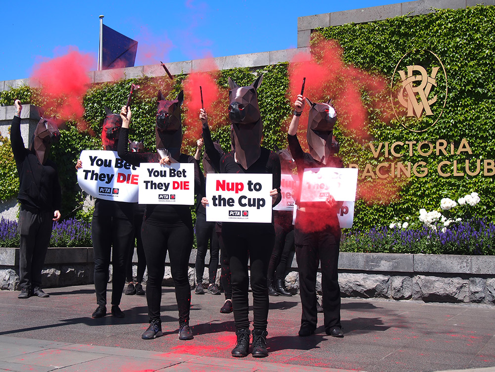 Protesters outside of the Melbourne Cup.