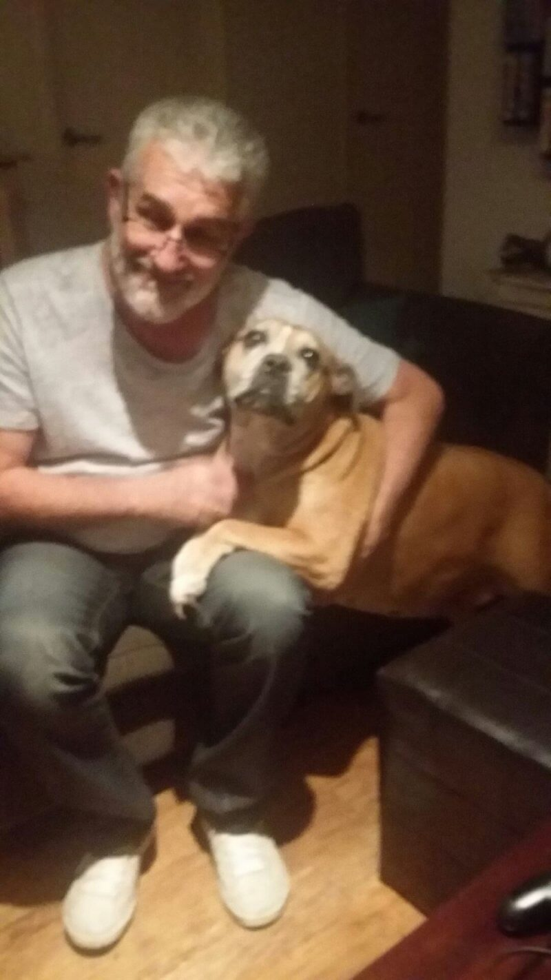 Missing dog rescued 12