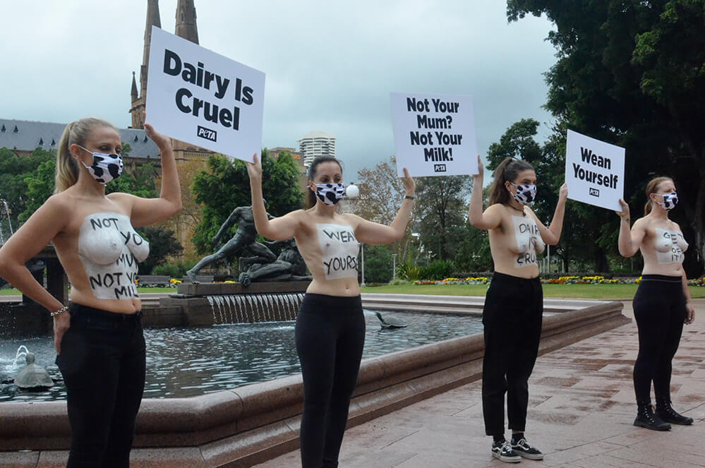 Vegan Mothers Bare Chests in Sydney to Highlight Dairy Industry Abuse