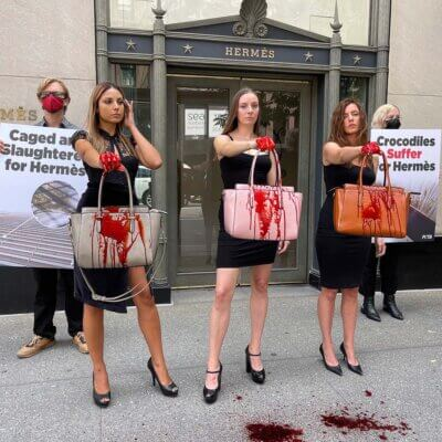 Protesters outside the Hermès store in NYC.