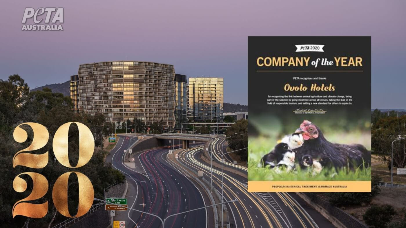 PETA Names Ovolo Hotels 2020 'Company of the Year'
