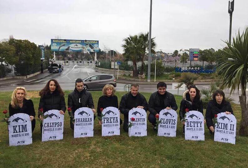 PETA protesters at Marineland