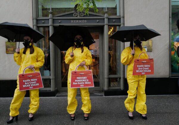 Hazmat Suits and High Heels, PETA US Turns Heads Outside Hermès Store