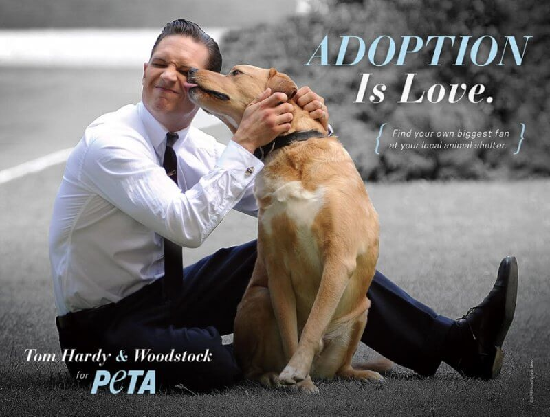 PETA Tom Hardy Ad