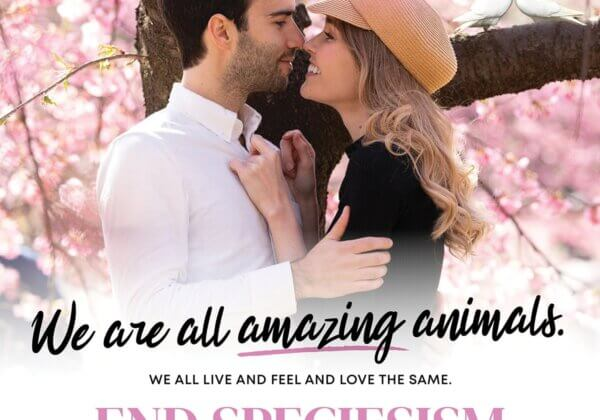 'The Amazing Race' Couple Campaigns to End Speciesism