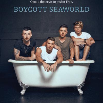 Union J in a bathtub to protest SeaWorld.