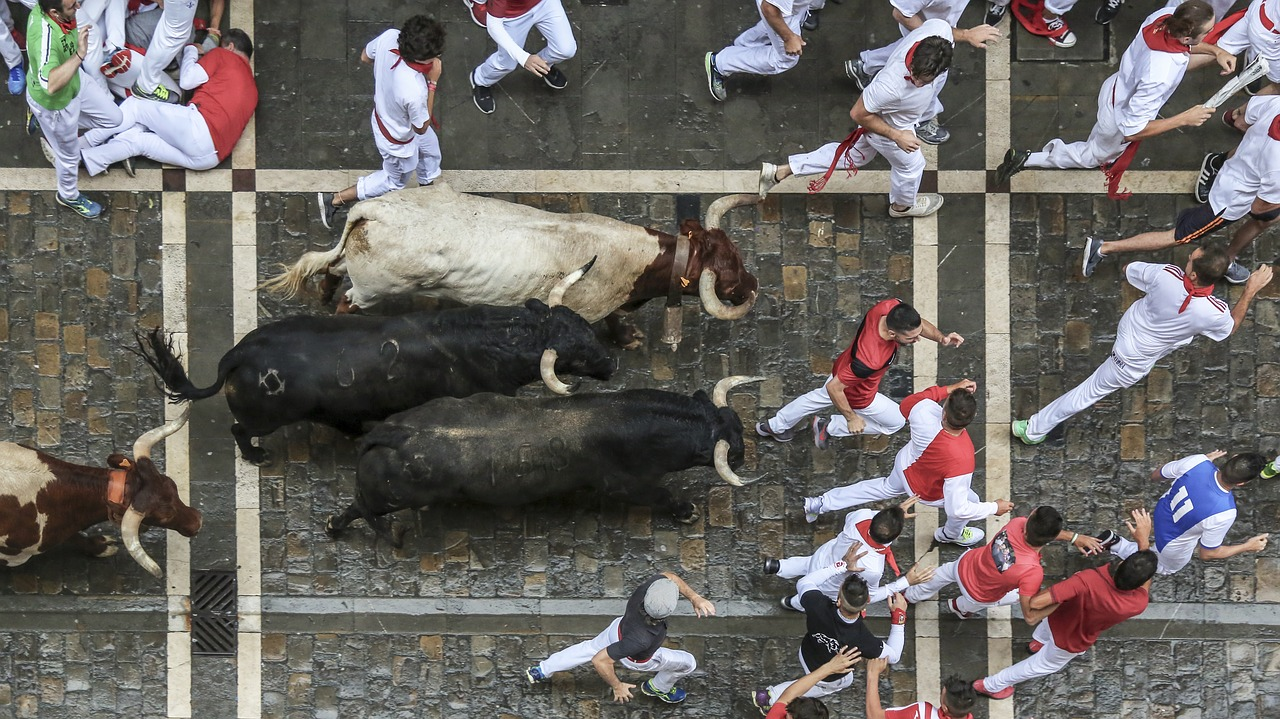 A photo of the Running of the Bulls.