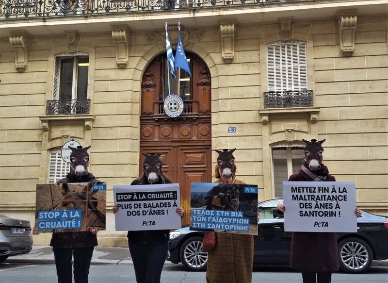 Demonstrators descend on Greek embassy in Paris