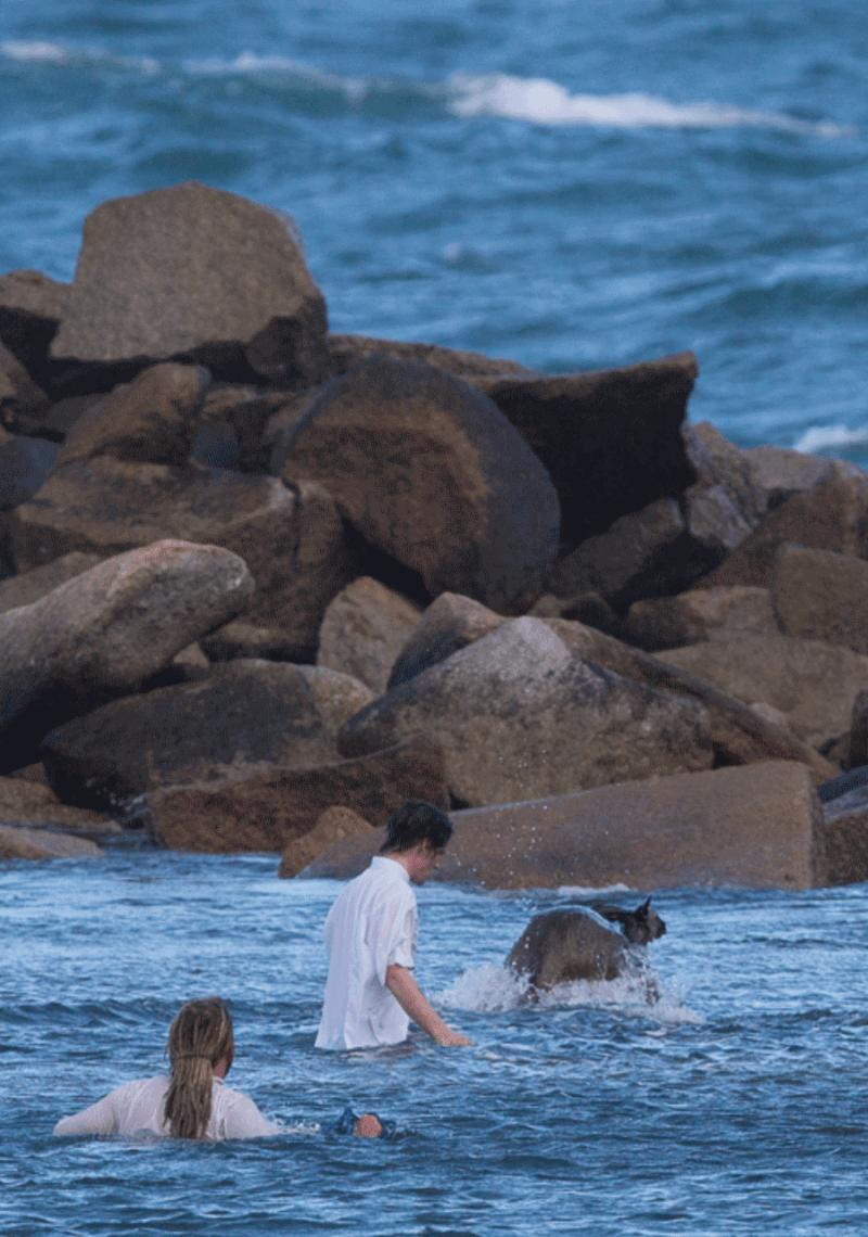 Men save drowning kangaroo