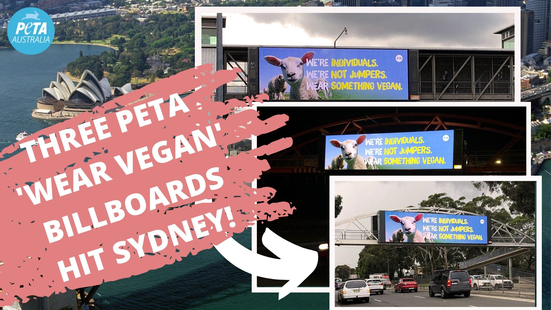 """A collage of the three PETA billboards in Sydney which say """"We're Individuals, We're Not Jumpers, Wear Something Vegan."""""""