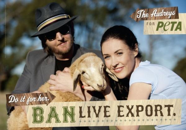 The Audreys Speak Up for Australian Animals