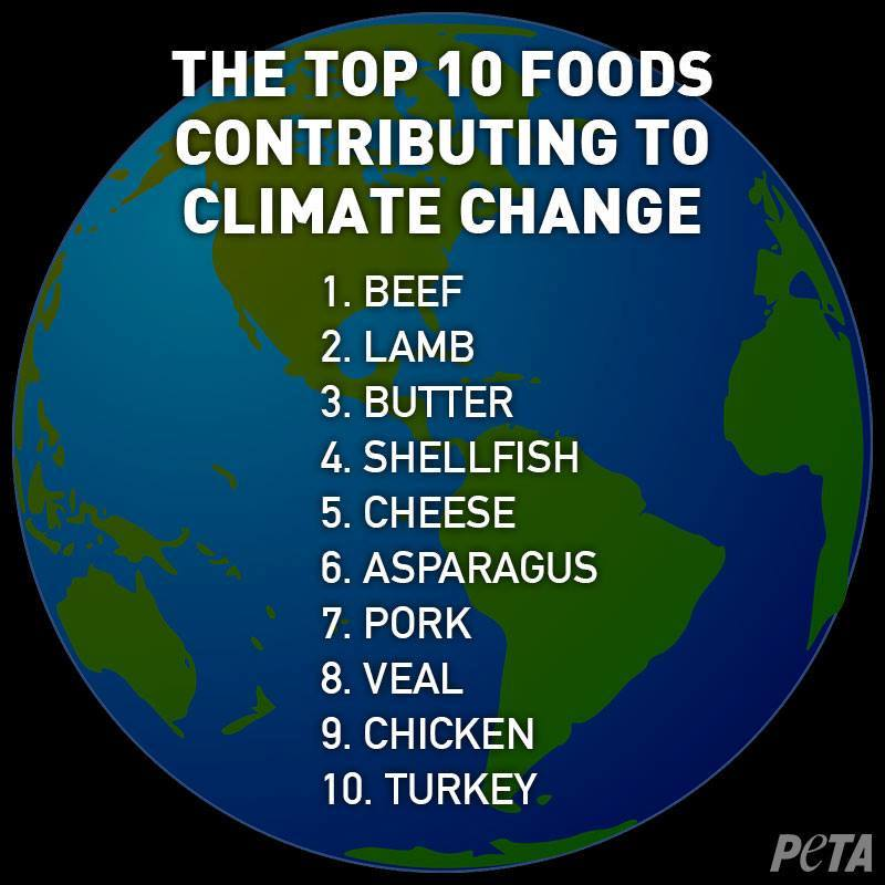 The Top 10 Foods Contributing to Climate Change