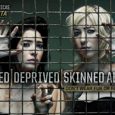 The Veronicas' PETA Ad