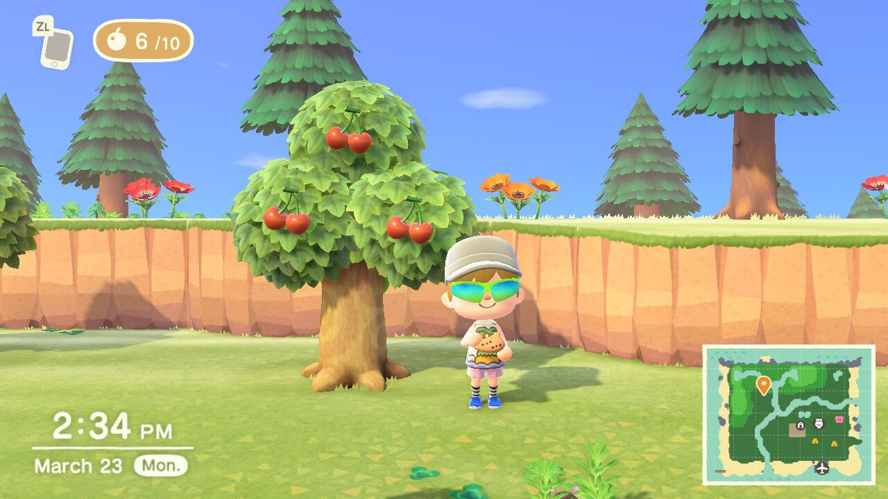 An image from Animal Crossing