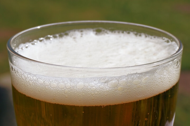 Toxic foods for dogs and cats: beer