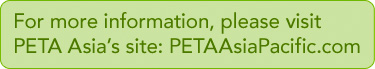 For More Information Please Visit: PETAAsiaPacific.com