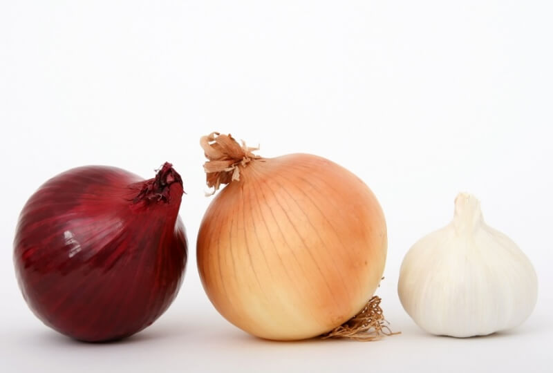 Toxic foods for dogs and cats: onion and garlic