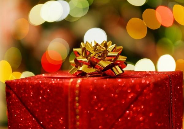 Vegan Christmas Gifts Under $50