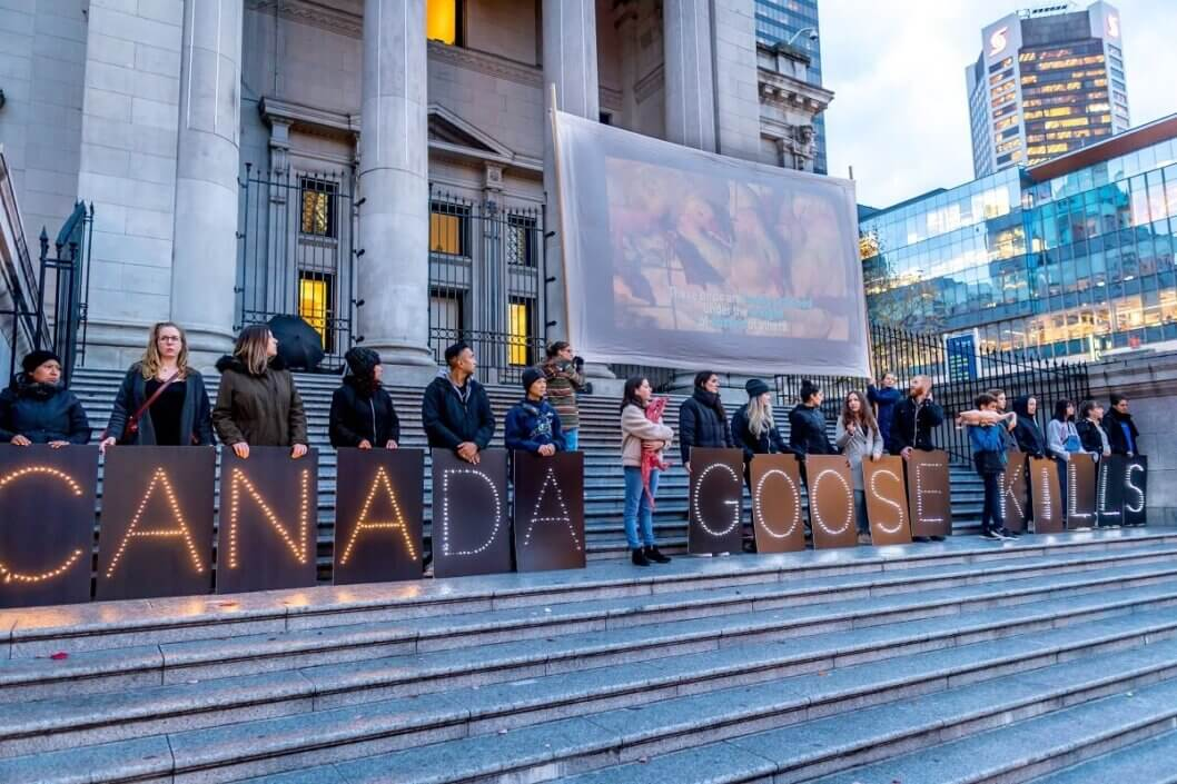 Canada Goose Protest in Vancouver