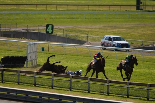Horses Suffer and Die In Jumps Racing
