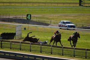 Fergus McIver horse dies