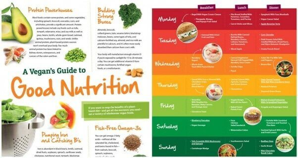 Nutrition page - Vegan Starter Kit