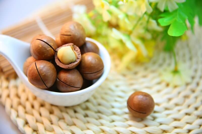 Toxic foods for dogs and cats: macadamia nuts