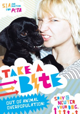 Sia PETA spaying/neutering ad