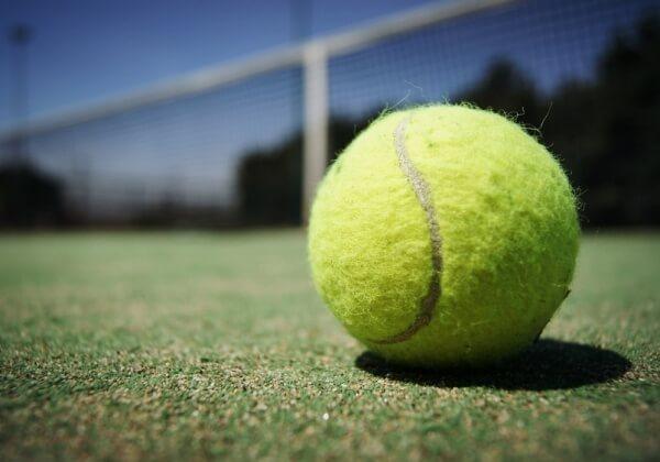 Vegan Tennis Players