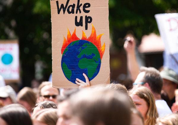 Urge the COP26 Climate Summit to Serve a Fully Vegan Menu