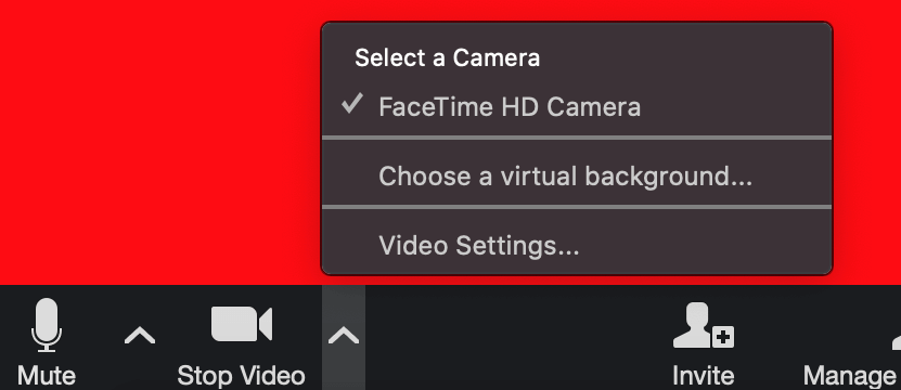 A screenshot of how to set your zoom background settings.